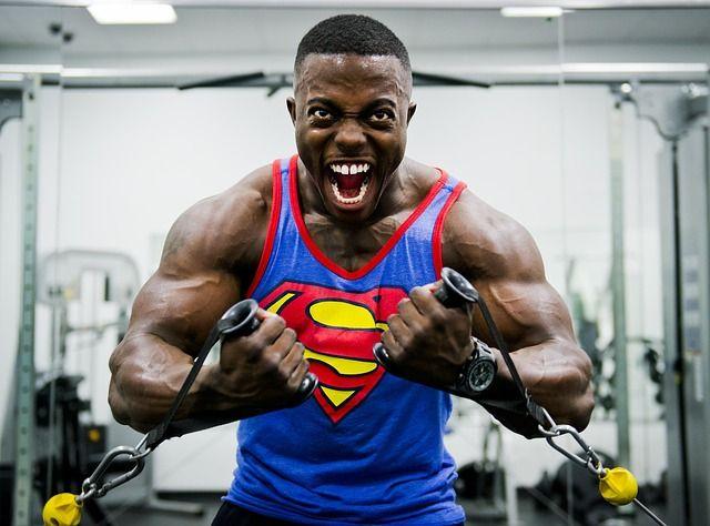 einfluss von bodybuilding